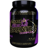 Stacker Europe BV 6th Gear Creatine (1135g)